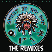 Spirit Of Hip Hop (Remixes) by David Strickland