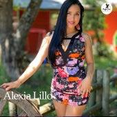 Las Cadenas von Alexia Lillo