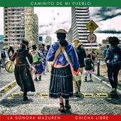 Caminito de mi Pueblo von Chicha Libre