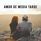 Amor de media tarde by Various Artists