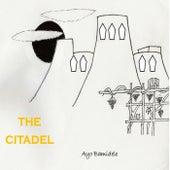 The Citadel von Ayo Bamidele