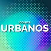 Iconos Urbanos by Various Artists