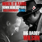 When It Rains Down Here It Pours (First Born Boy Remix) de Big Daddy Wilson
