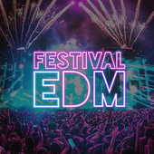 Festival EDM de Various Artists