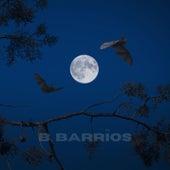 Campos Eliseos by B.B.
