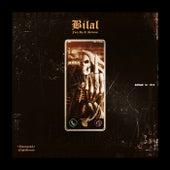 Fuck up It (Riddim) von Bilal