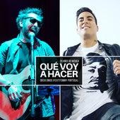 Qué Voy a Hacer (Versión Acústica) by Diego Dibos