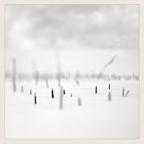 In A Place Of Such Graceful Shapes by Taylor Deupree