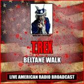 Beltane Walk (Live) von T. Rex