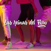 Las Reinas Del Flow by Various Artists