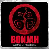 Something We Should Know by Bonjah