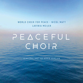 Peaceful Choir - New Sound of Choral Music (360° / 8D Binaural Version) von Lavinia Meijer
