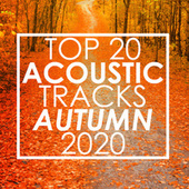 Top 20 Acoustic Tracks Autumn 2020 (Instrumental) von Guitar Tribute Players