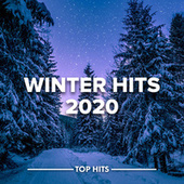 Winter Hits 2020 fra Various Artists