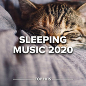 Sleeping Music 2020 fra Various Artists
