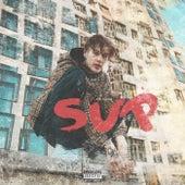 SUP by Sin Davis
