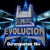 Duranguense Mix by DJ Flakito