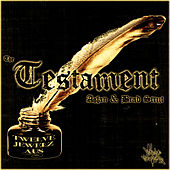 The Testament (feat. Brad Strut) von Aslan
