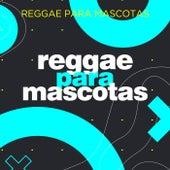 Reggae para mascotas de Various Artists
