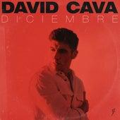 Diciembre de David Cava