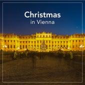 Christmas in Vienna de Various Artists