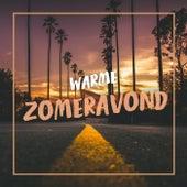 Warme Zomeravond de Various Artists