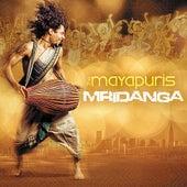 Mridanga by Mayapuris