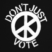 Don't (Just) Vote de Cass McCombs