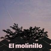 El molinillo von Various Artists