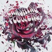 Crashing Flowers by Crashing Flowers