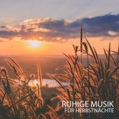Ruhige Musik für Herbstnächte de Verschiedene Interpreten