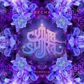 Весна (Remix) von Sutra