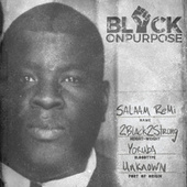 Black On Purpose by Salaam Remi