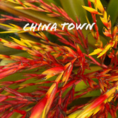 China Town by Guala