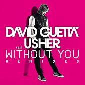 Without You (feat.Usher) [Remixes] de David Guetta