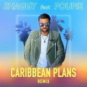 Caribbean Plans (Remix) de Shaggy