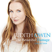 The Beautiful Damage Collection de Judith Owen