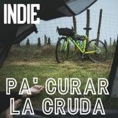 Indie Pa' Curar La Cruda de Various Artists