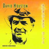 Greatest Hits de David Houston