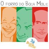 O Forró do Boca Mole von 3teto Boca Mole