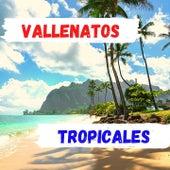 Vallenatos Tropicales de Alfredo Gutiérrez, Binomio de Oro de América, Bovea y sus Vallenatos, El Gran Martin Elias