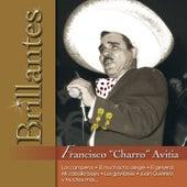 Brillantes - Francisco