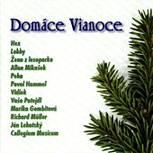 Domáce Vianoce by Various Artists