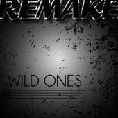 Wild Ones (Flo Rida feat. Sia Remake) - Single by Wild Flo