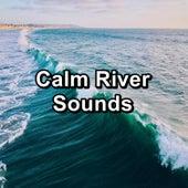 Calm River Sounds de Ocean Sounds Collection (1)