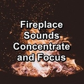Fireplace Sounds Concentrate and Focus by Sleep Music (1)