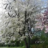 The Sea of Deep Content by O.O.D.