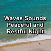 Waves Sounds Peaceful and Restful Night von Delta Waves