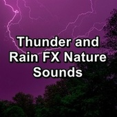 Thunder and Rain FX Nature Sounds von Relaxing Rain Sounds