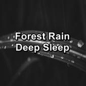 Forest Rain Deep Sleep by Baby Sleep